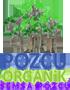 Şemsa Pozcu Organik l Organik Tarım & Üretim Çiftliği